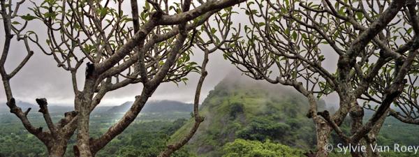 SrilankaPano08