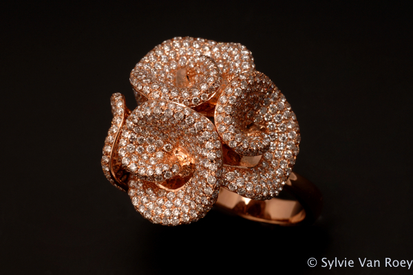 Jewelry 19