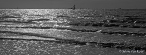 North Sea B&W 03