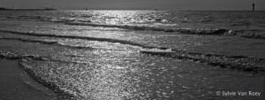North Sea B&W 04