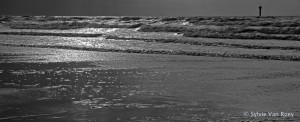 North Sea B&W 08