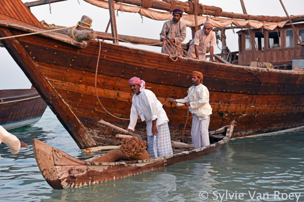 Dhows5