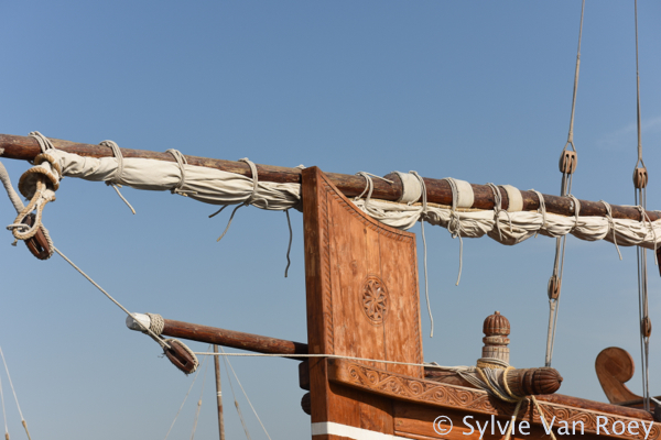 Dhows13