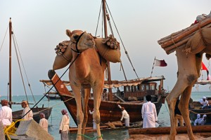 Dhows7